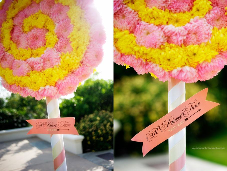 20110730_tolpa-wedding-2picks_1395.jpg