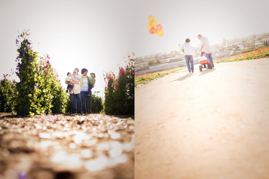 Panissidi-Flower-Fields-17021.jpg